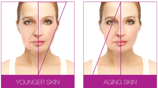 graphic showing the difference of young and old skin